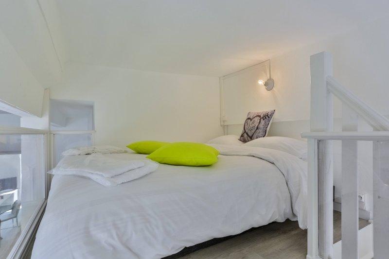 GARIB D · Place Garibaldi - Studio duplex - Climatisation