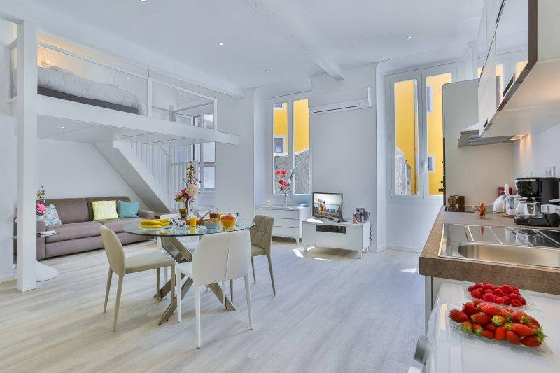 Place Garibaldi - Studio Duplex - Climatisation